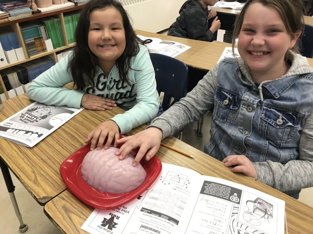 Students touching gelatine brain for Brain Waves